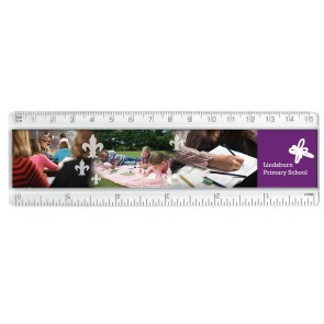 promotional 15cm 6in plastic insert rulers  SEU-RU0004