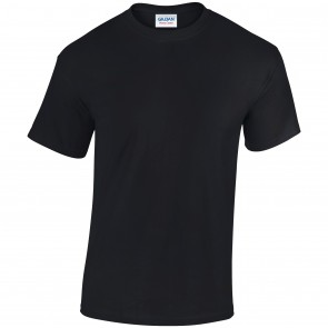 promotional heavy cotton adult t shirt RAL-GD005
