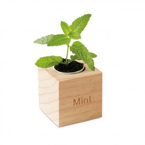 promotional mint herb wooden pots MOB-MO9337